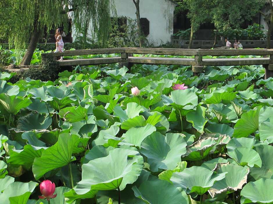 Garden of Humble Admistrator, Suzhou