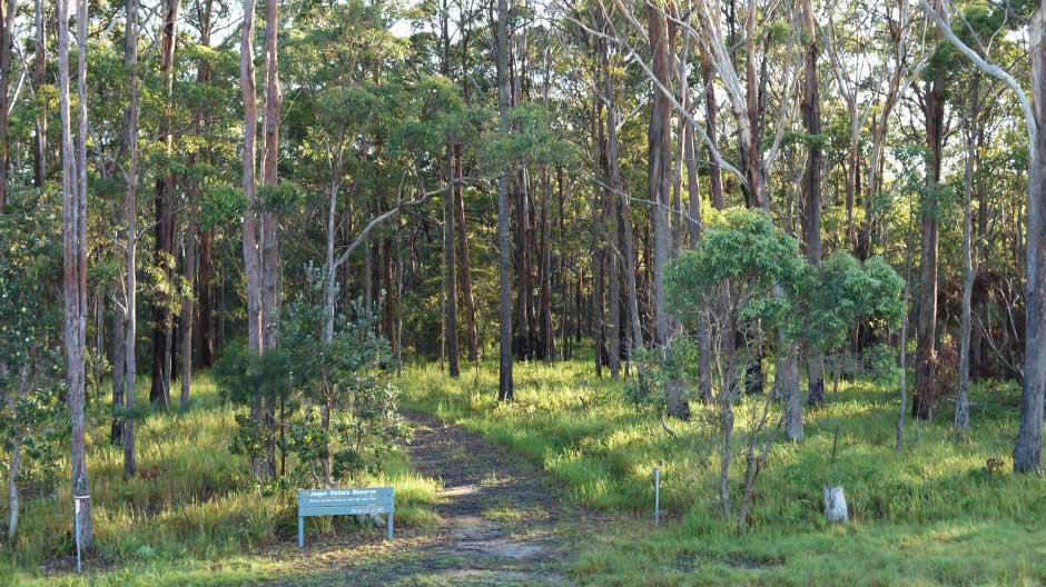 Jagun-Nature-Reserve