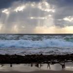 Kelp awash