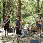 The Okapis Remnant bush
