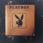 Venice Biennale, Playboy in Braille