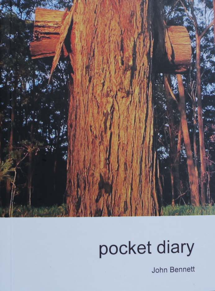 'A Pocket Diary', Flying Island Books, 2012