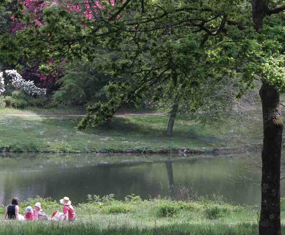 Stourhead picnic