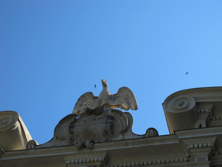 Villa D'Este, swifts