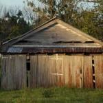 Bellingen shed
