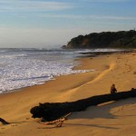 Letter Box Beach, Valla,   forest meets the sea