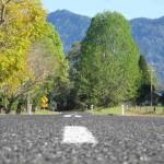 Road to Dorrigo