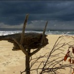 Sculpture, Valla Beach