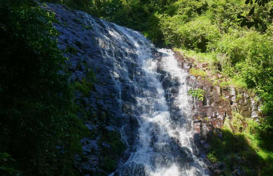 Tristania Falls, Dorrigo_1