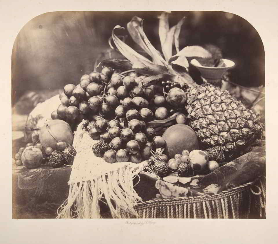 Roger Fenton still life with fruit, 1860