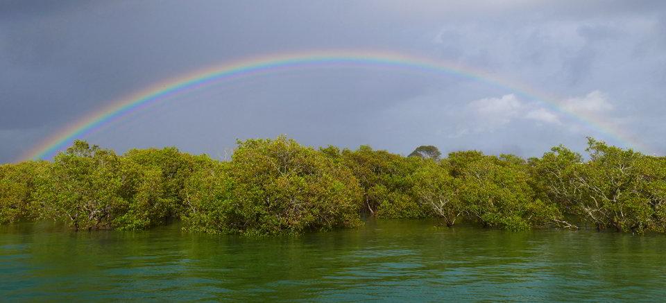 Rainbow Urunga
