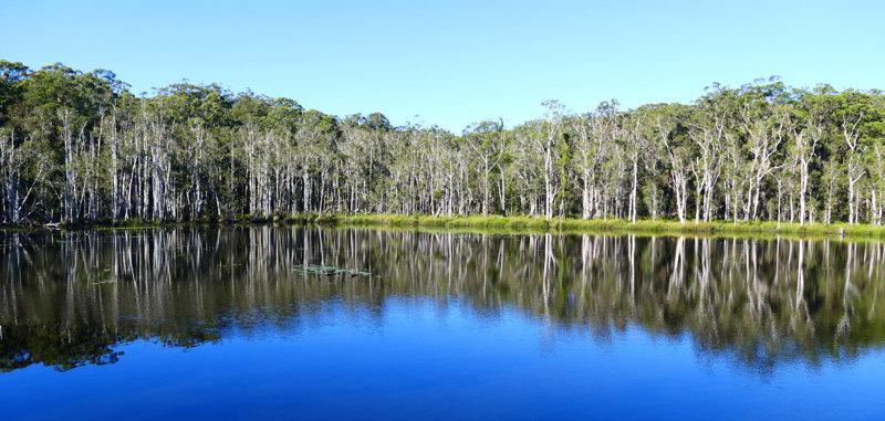 Urunga wetlands4