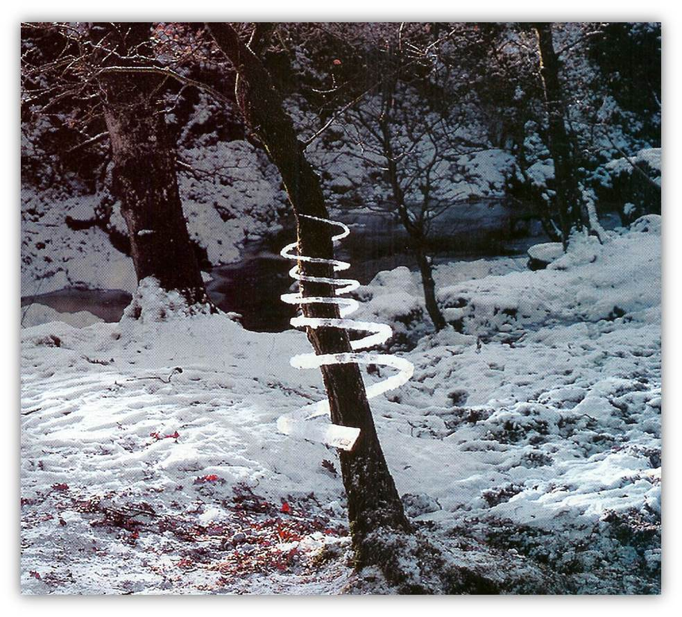 Andy Goldsworthy ice