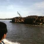 Turbid rivers from logging