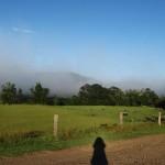 Bundanon, misty morning