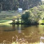 Singleman's Hut, Bundanon