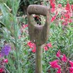 Hidcote, National Trust Garden