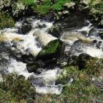 Ebor Falls, Dorrigo Plateau
