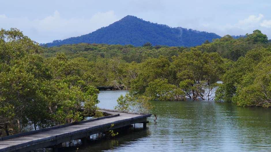 Nunguu Mirral from Urunga lagoon