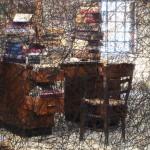 Venice Biennale, Shiota-books