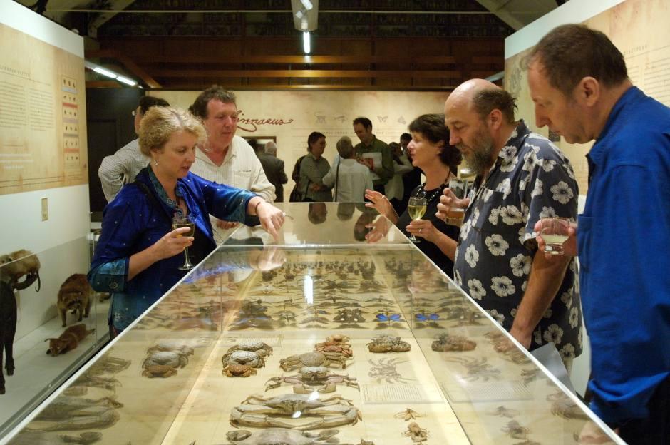 Linnaeus exhibtion, Macleay Museum