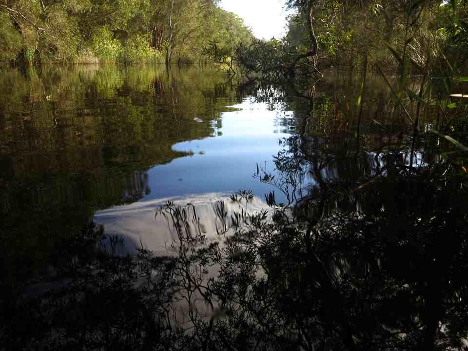 Oyster Creek 11 April3
