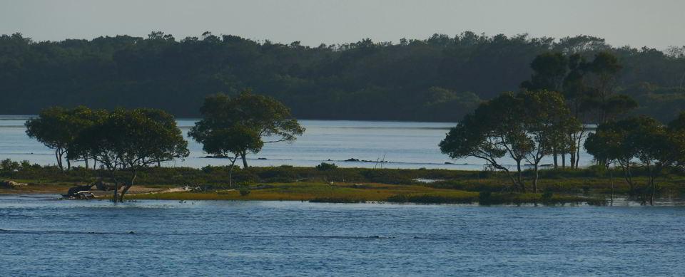 02 21_Kalang and Bellinger Rivers