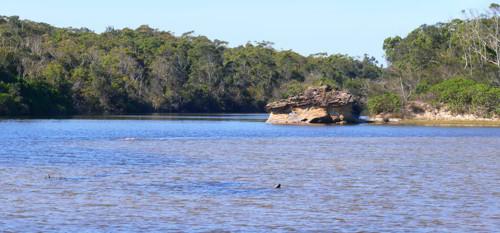 Oyster Lagoon