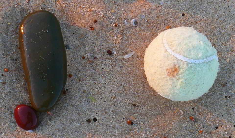 non-natural sea sponge1